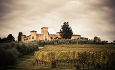Vip Supertuscan WineTour