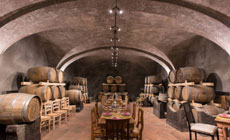 Wine Enthusiasts' Dinner at a Boutique Tuscan Winery in Chianti
